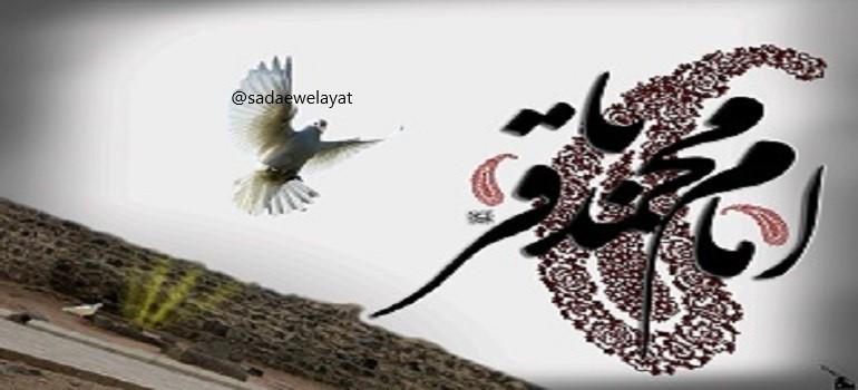 امام باقر{ع} کی حیات کا خاکہ