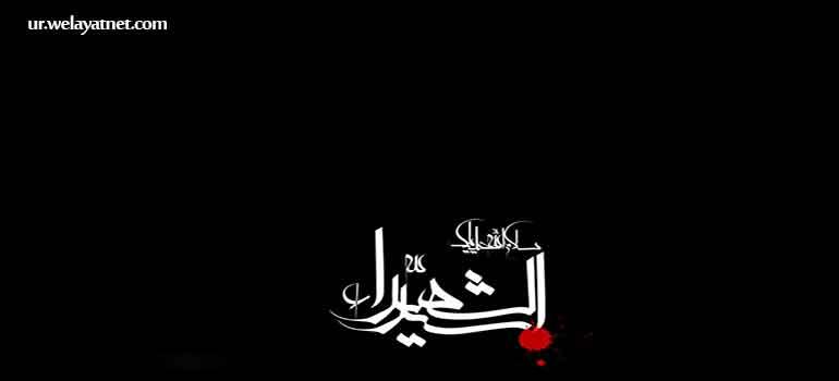 حضرت صدیقه ٔ کبری (س)کی نگاہ میں زیارت حضرت ابا عبدالله الحسین(ع)کی اہمیت