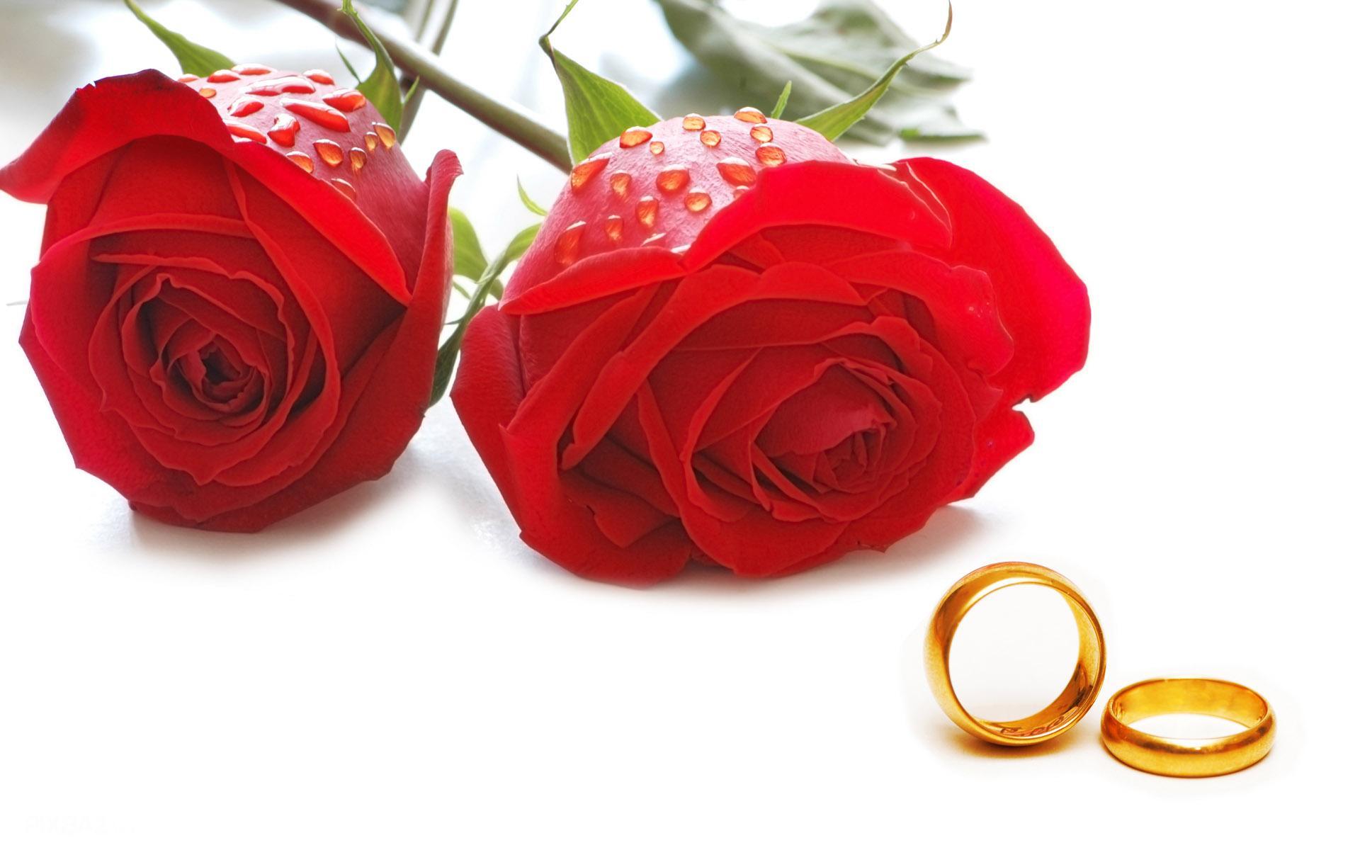غربت کے خوف سے شادی نہ کرنا