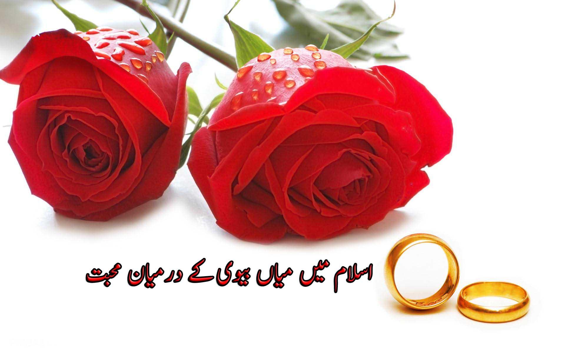 اسلام میں میاں بیوی کے درمیان محبت