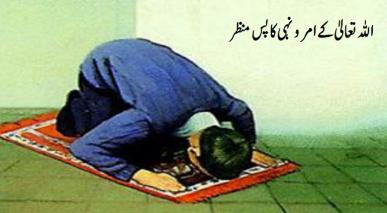 اللہ تعالیٰ کے امر و نہی کا پس منظر