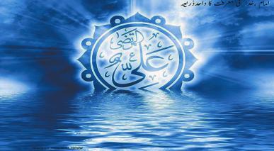 امام (علیہ السلام)،خدا  کی معرفت کا واحد ذریعہ ہے