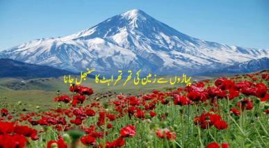 پہاڑوں سے زمین کی تھرتھراہٹ کا سنبھل جانا