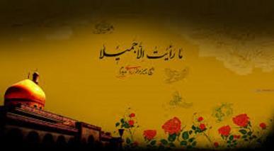 حضرت زینب (س) کی عظمت رسول اللہ (ص) کی نظر میں