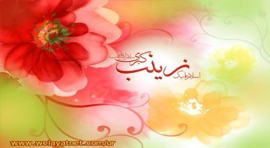 حضرت زینب (سلام اللہ علیہا) اہل سنت کی نگاہ میں