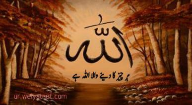 ہر چیز کا دینے والا اللہ ہے