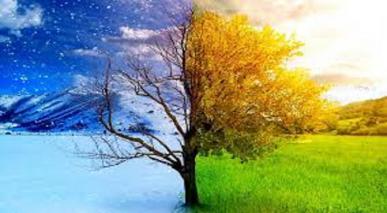 حکمت اور عدلِ الٰہی کا تقاضا اور خیر کا شرّ پر غلبہ