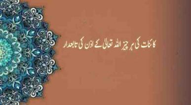 کائنات کی ہر چیز اللہ تعالیٰ کے اذن کی تابعدار