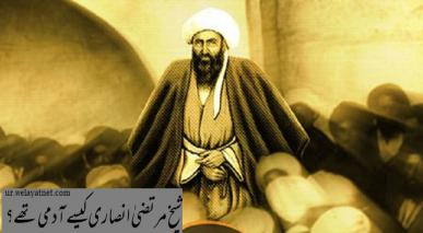 شیخ مرتضیٰ انصاری کیسے آدمی تھے؟