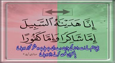 اللہ کی عبادت کیوں؟