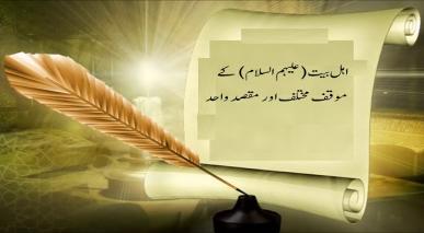 اہل بیت (علیہم السلام) کے موقف مختلف اور مقصد واحد