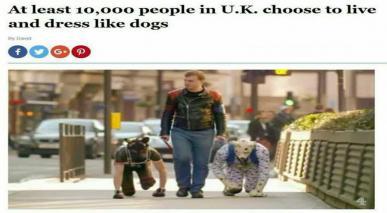 """دس ہزار سے زیادہ برطانوی شہری """"انسانی کتے"""" بن چکے ہیں"""