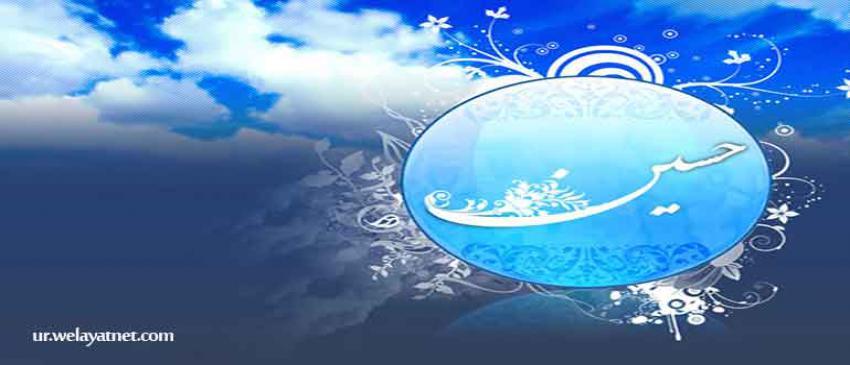 زیارت حضرت امام حسین علیہ السلام  کی اہمیت